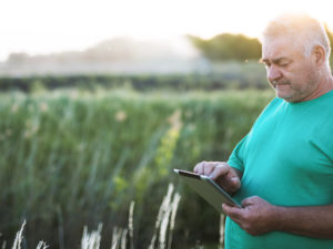 A Technology Platform Providing Smart Farming Solutions to Smallholder Farmers in Northern Nicaragua